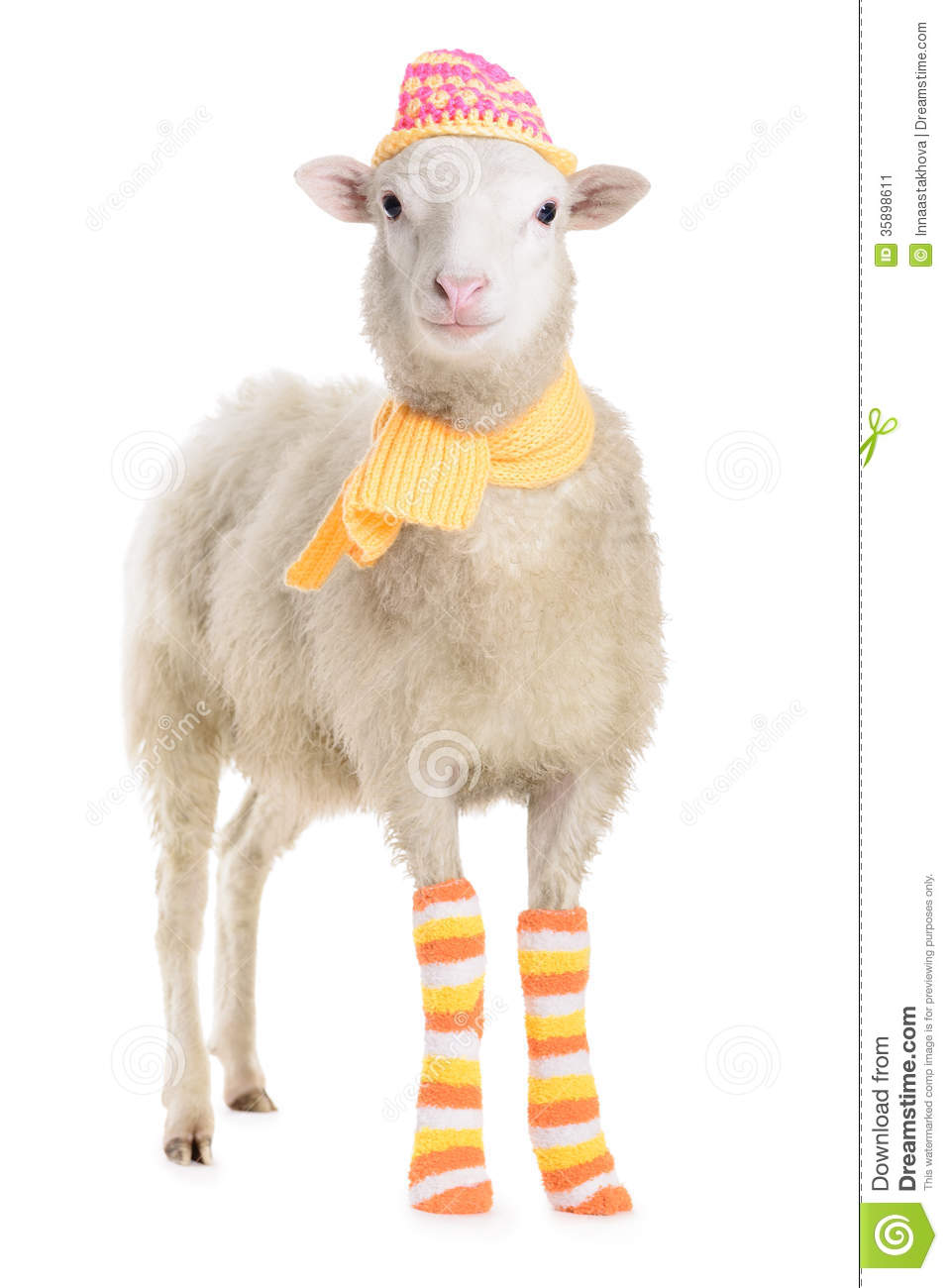 sheep in clothes stock image image 35898611 martin luther king clip art free martin luther king clip art