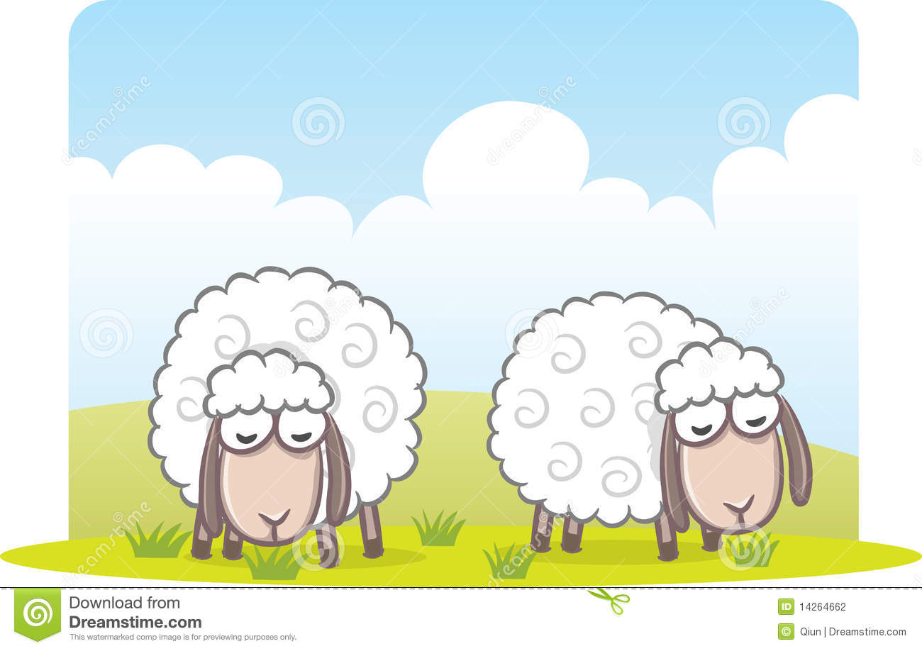 Sheep Eating Grass Stock Photography - Image: 14264662