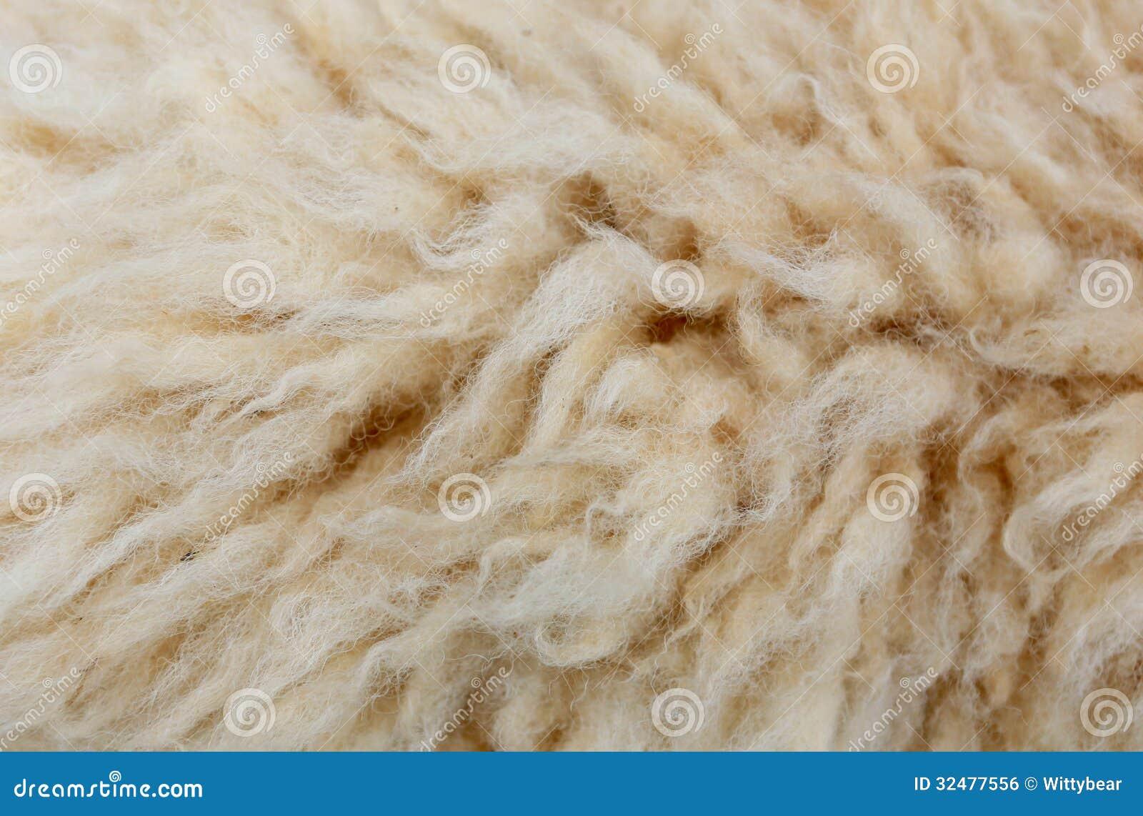 Sheep Fleece For Texture Background Stock Photo Image
