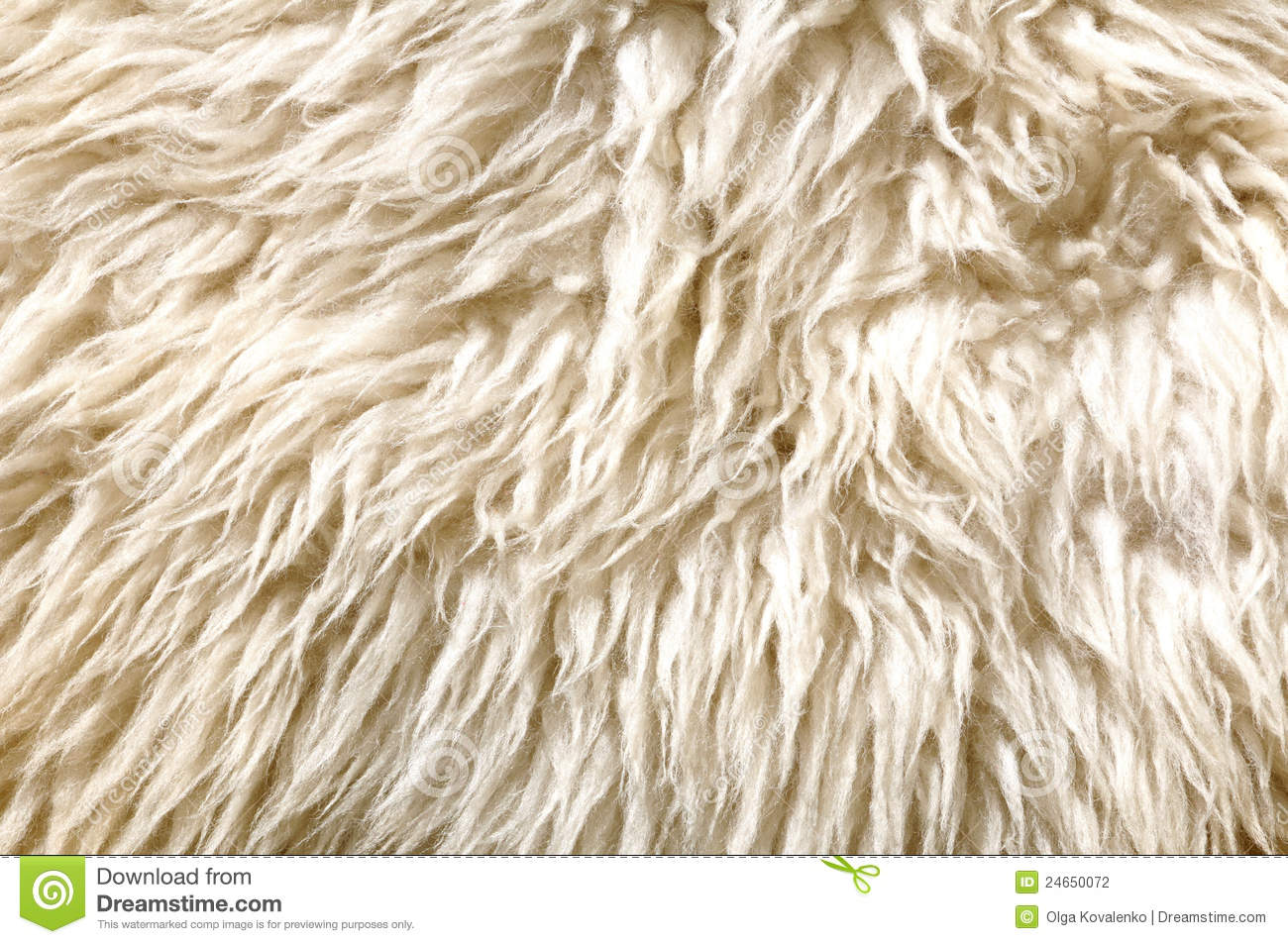 Sheep Fur Texture Stock Photo Image Of Nature Detail