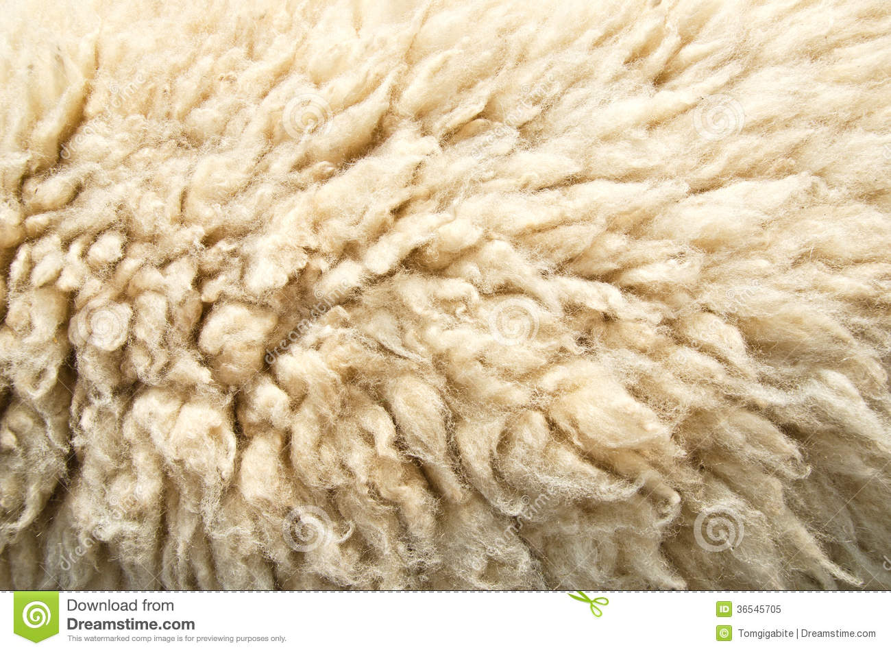 Sheep Wool Skin Royalty Free Stock Photo Image 36545705