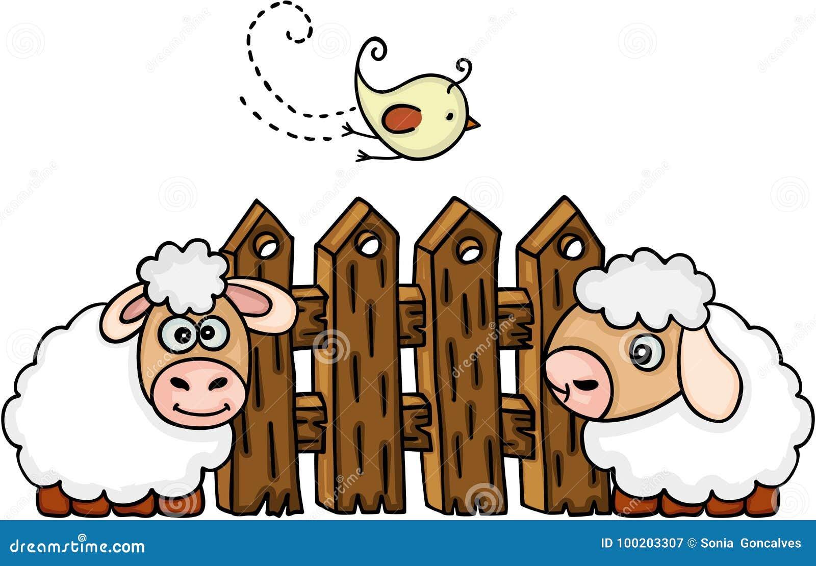Sheeps met vogel vóór een omheining