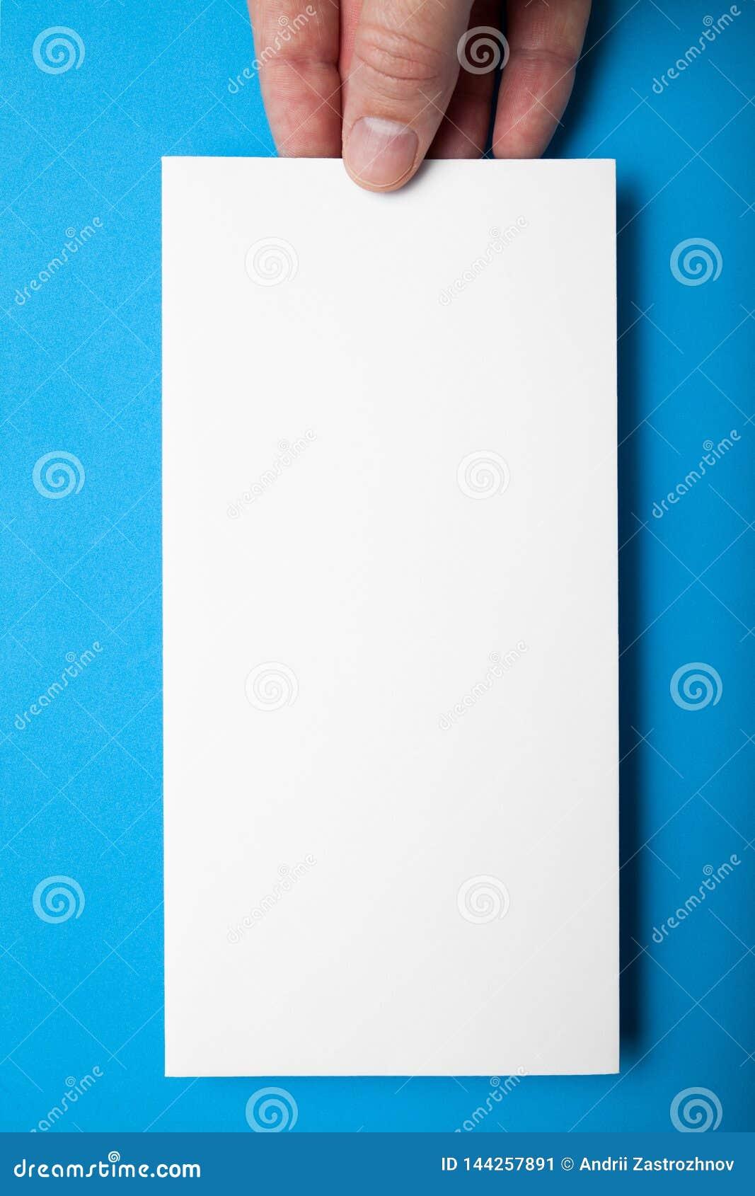 Sheet template. Booklet design dl flyer on blue background