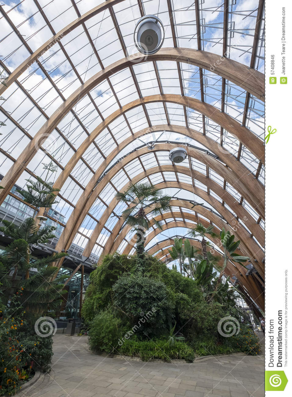 sheffield winter gardens editorial photo image 57408846