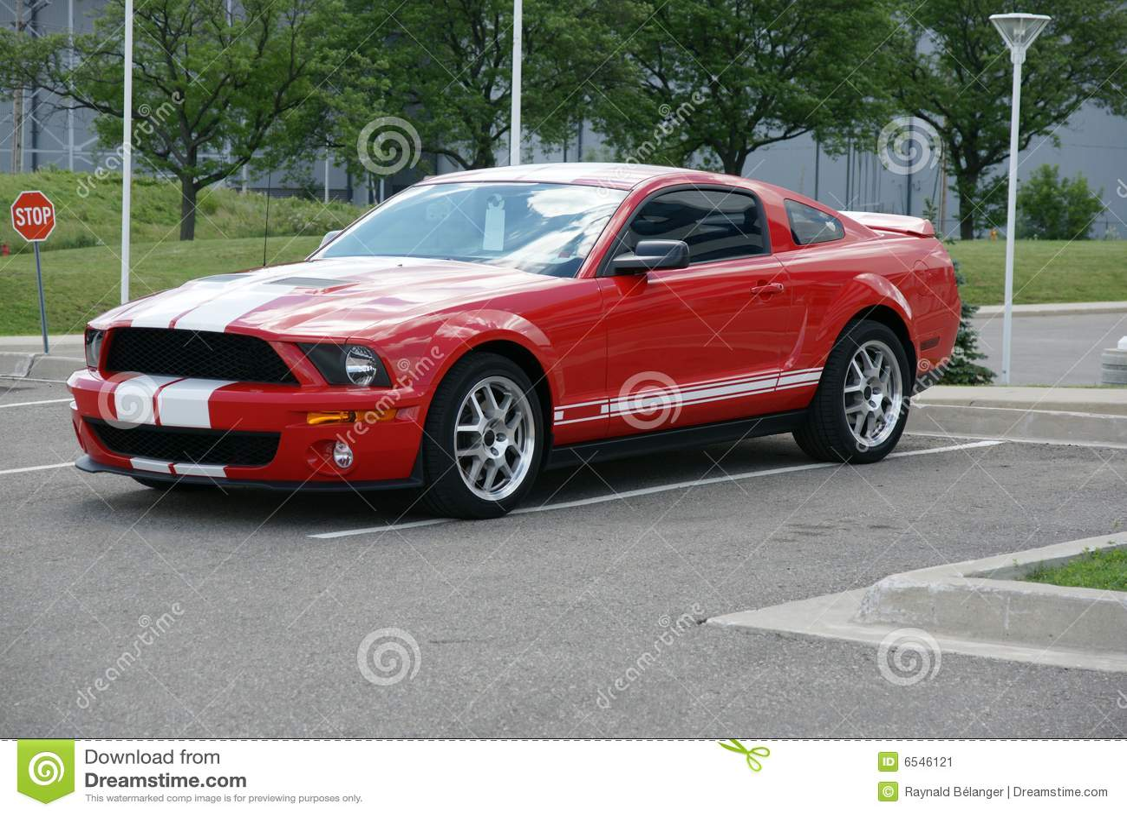 Shelby stock image image of char autos cobra photo 6546121