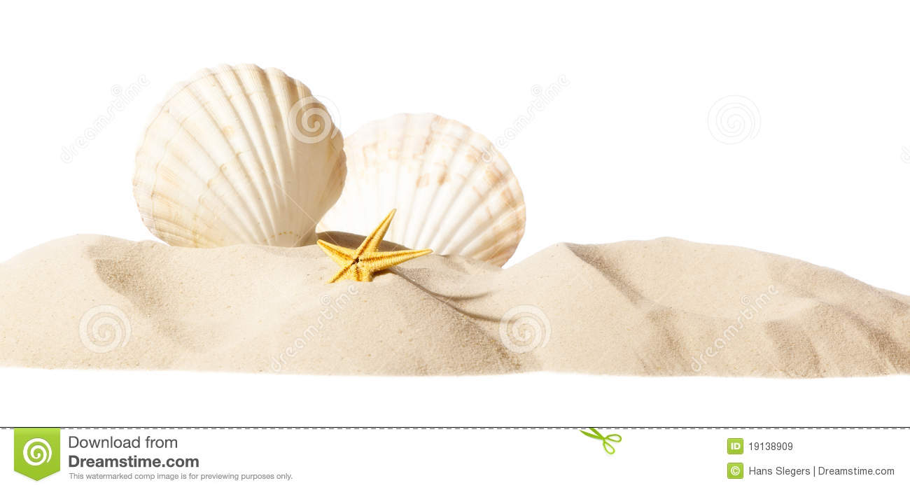 Shell Beach Royalty Free Stock Image