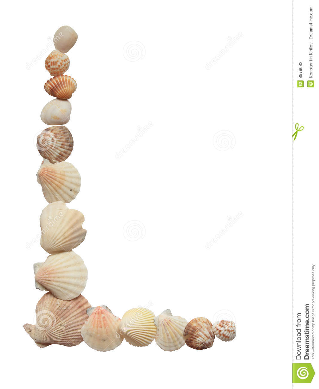 Border made from various sea shells isolated on white background.