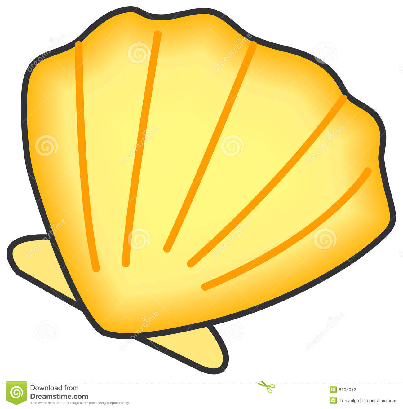 Vectorial illustration of shell. Isolated on a white background. EPS ...