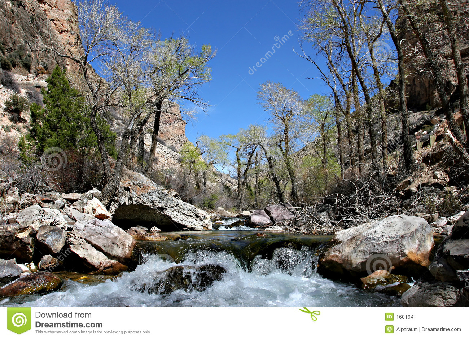 Shell creek