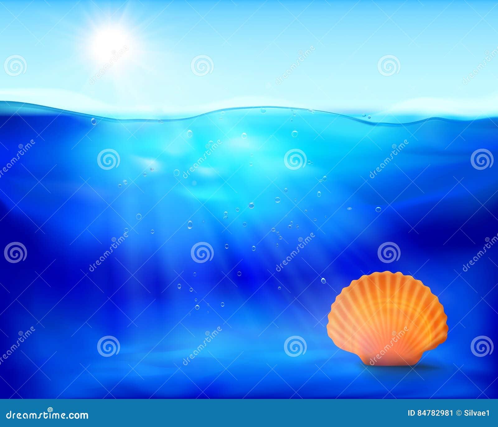 Shell dans l eau Illustration de vecteur