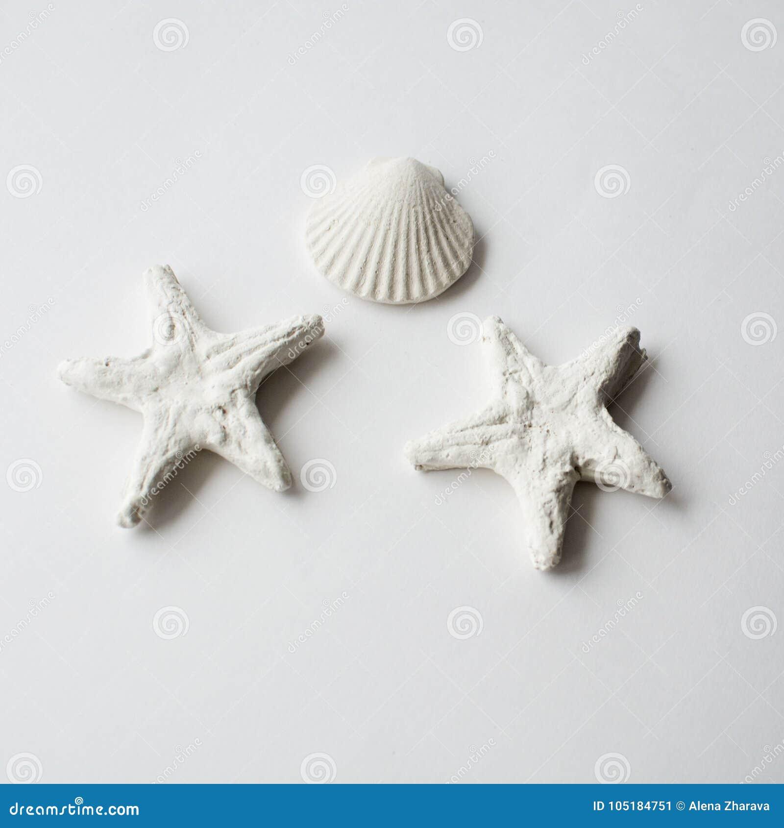 Shell et étoiles de mer, décor