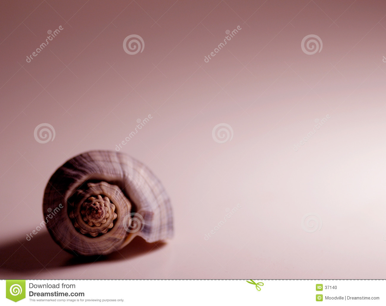 Shell in rood