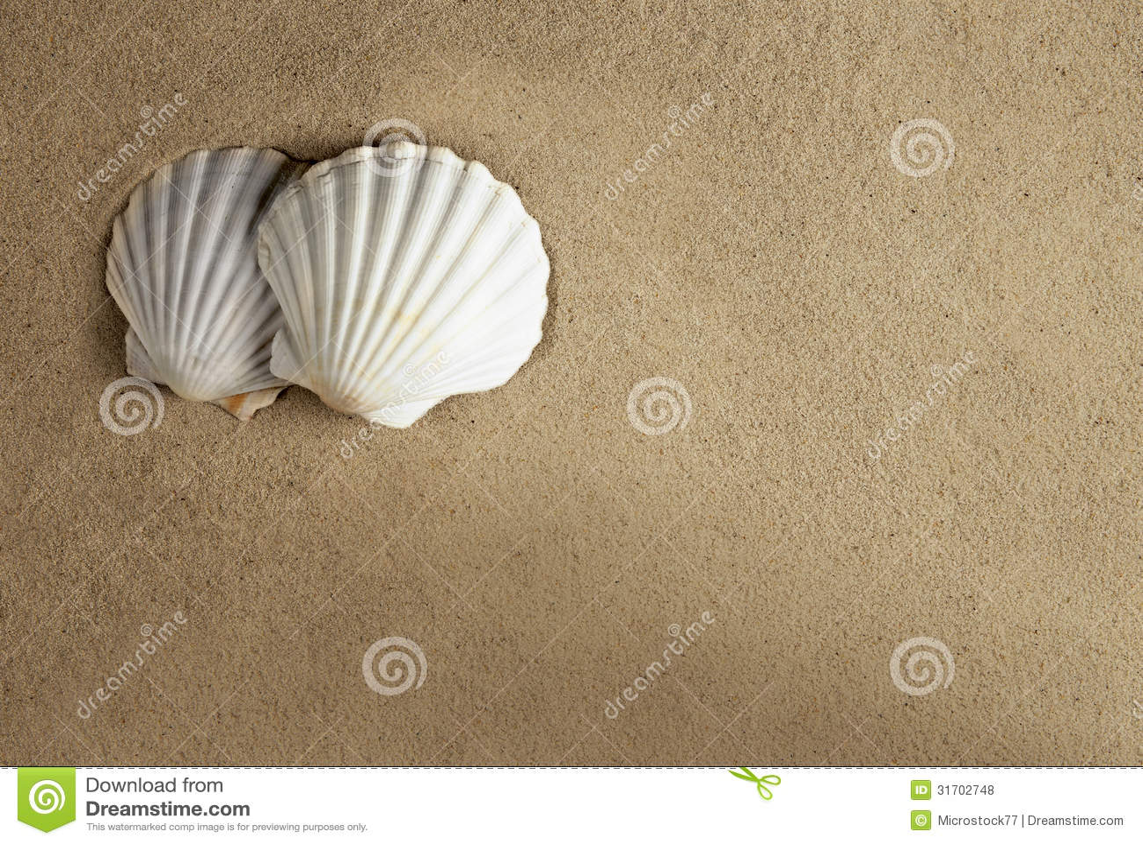 Shell sand romantic