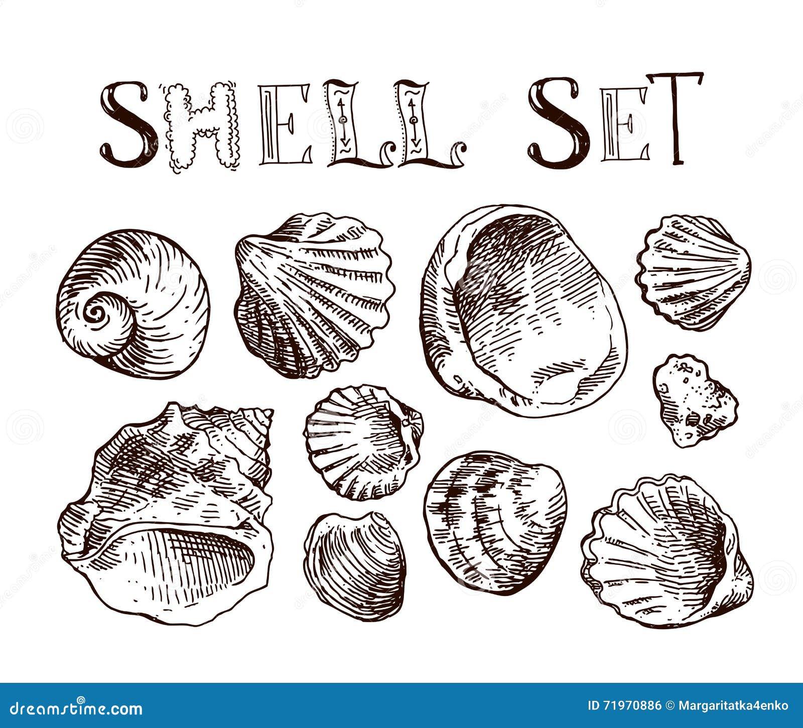 Shell tiré par la main