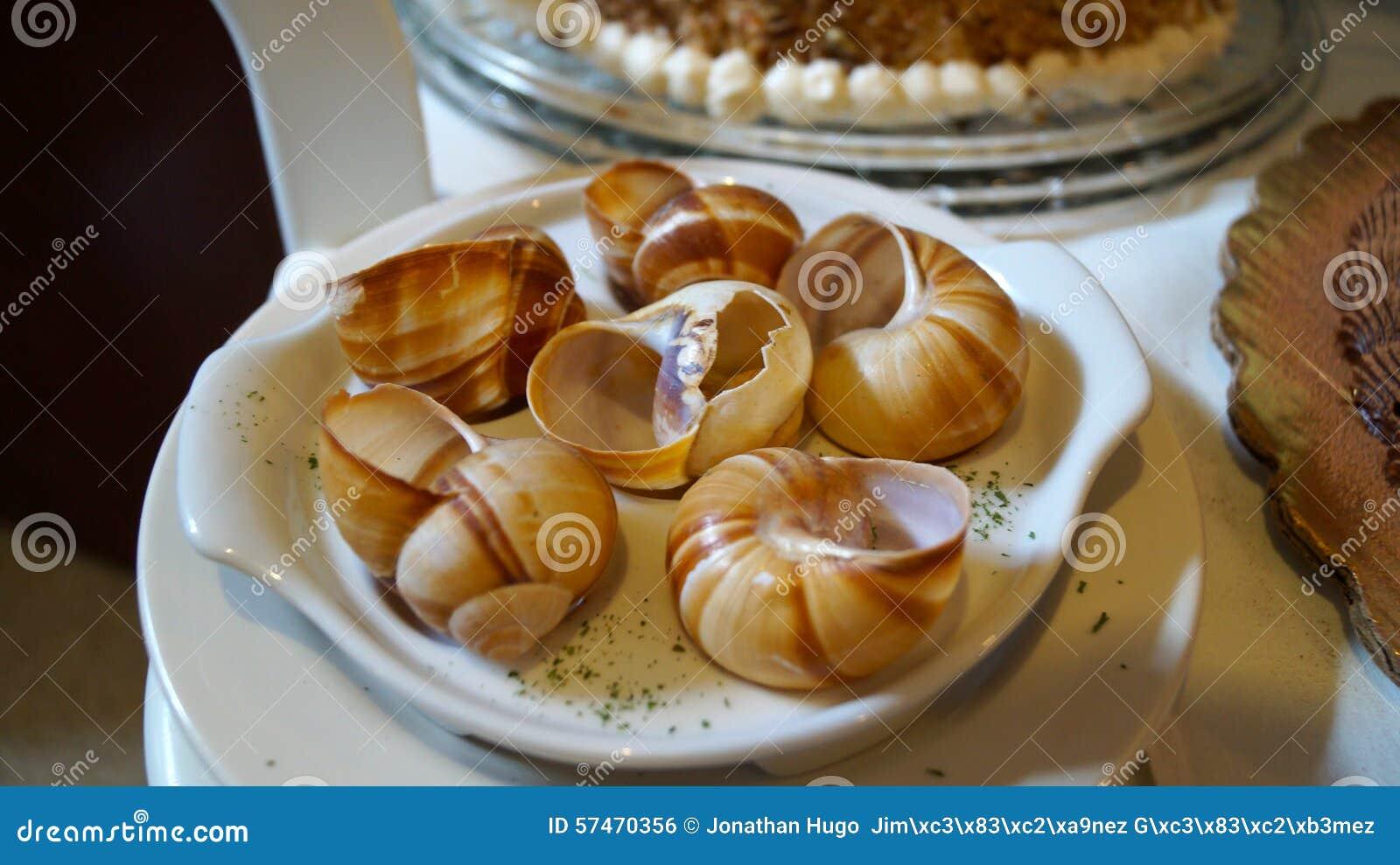 Shell vazios dos caracóis do escargot