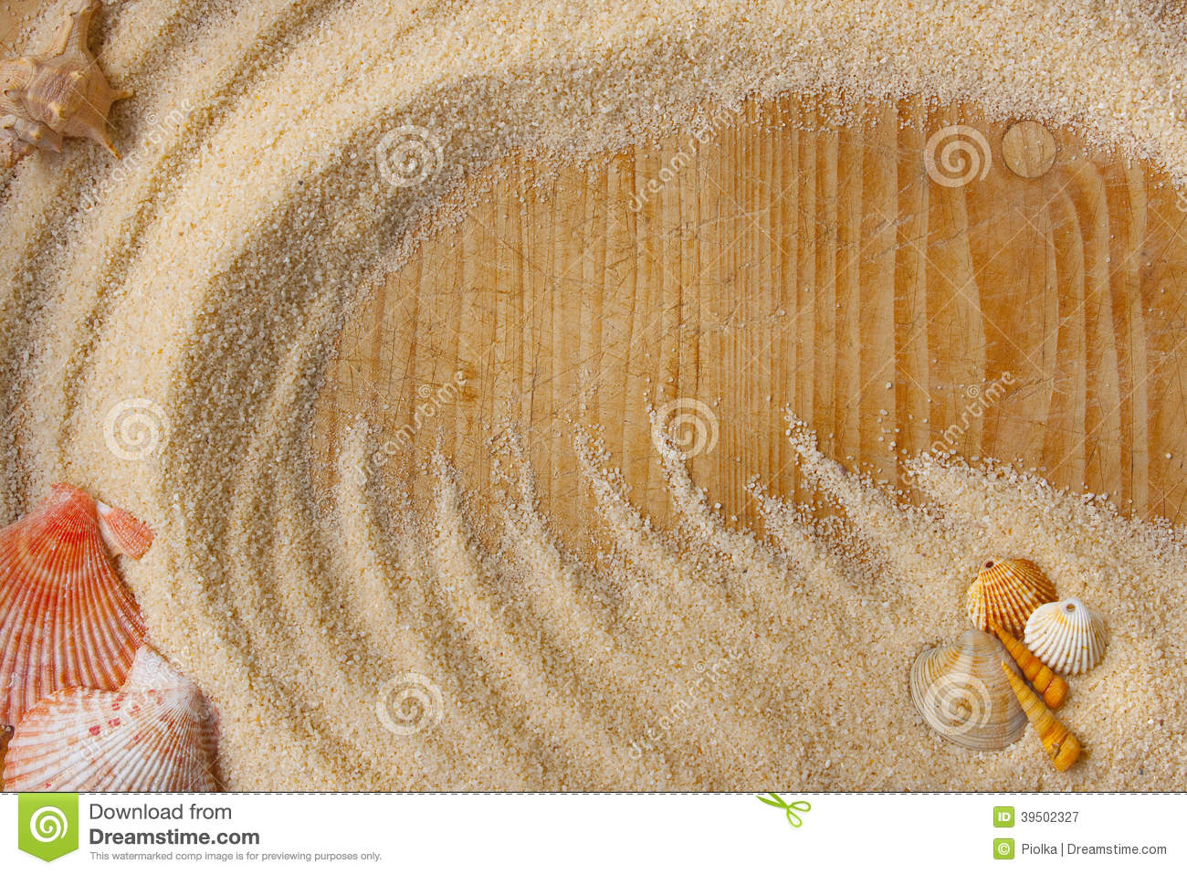 Shells and sand background