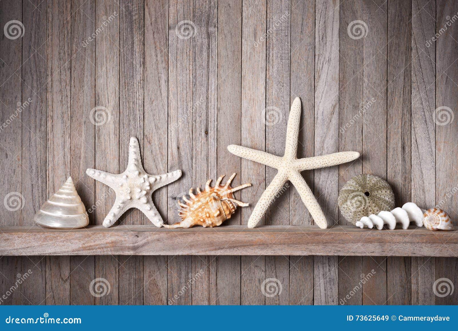 Download Shells Starfish Wood Background Stock Image