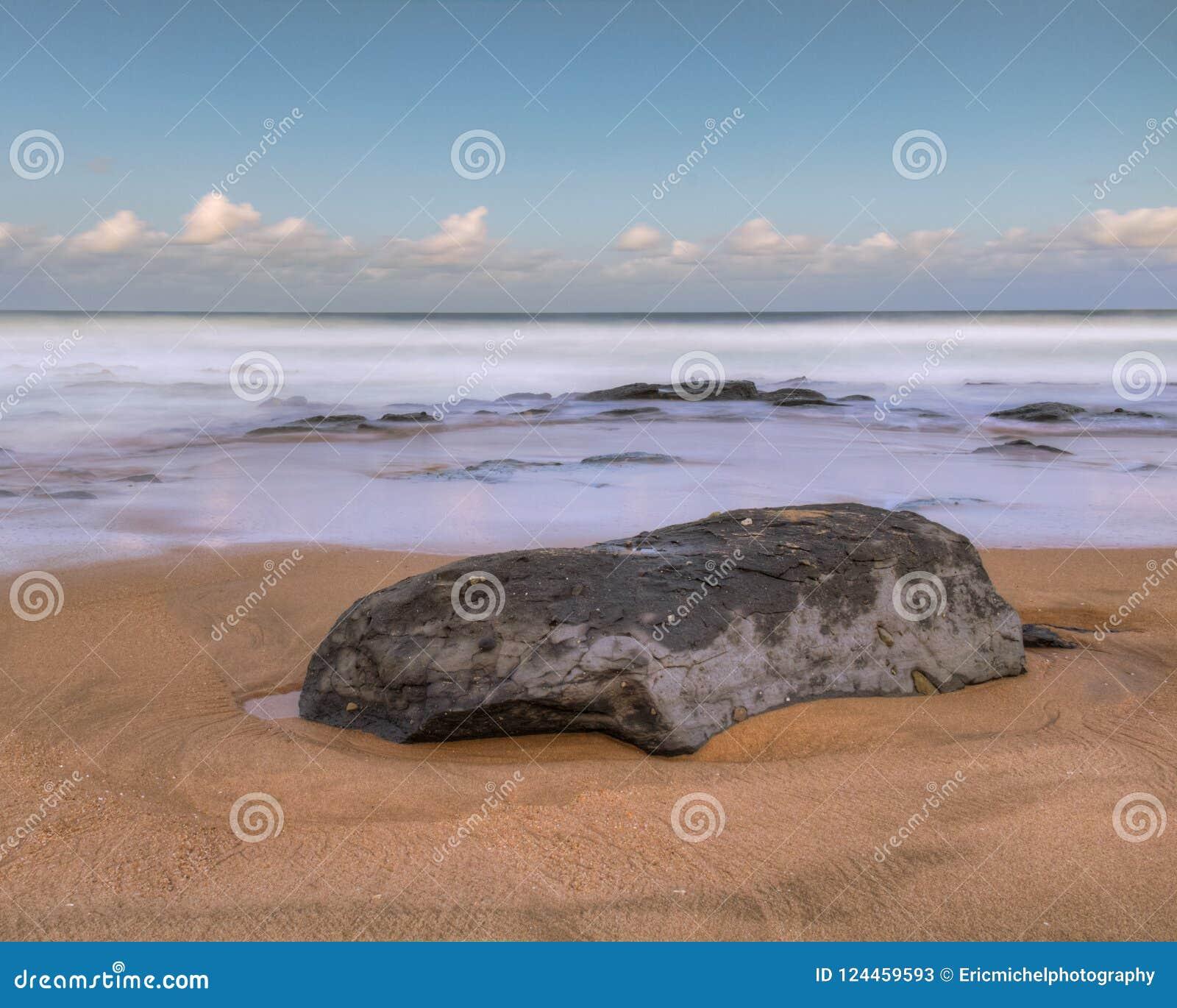 Shelly exponering för strandsolnedgånglon