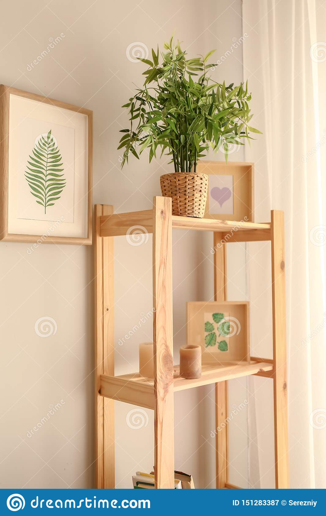 Shelving Unit With Green Plant And Decor In Room Stock Image Image Of Estate Ecological 151283387
