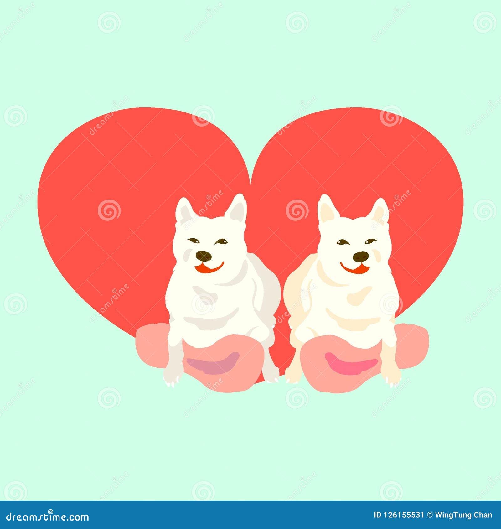 Shiba Inu con el corazón