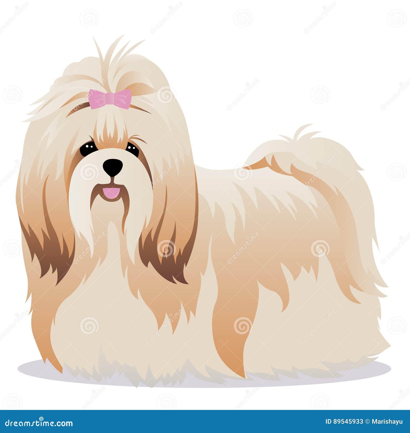 Shih Tzu Hund Vektor Abbildung Illustration Von Karikatur 89545933