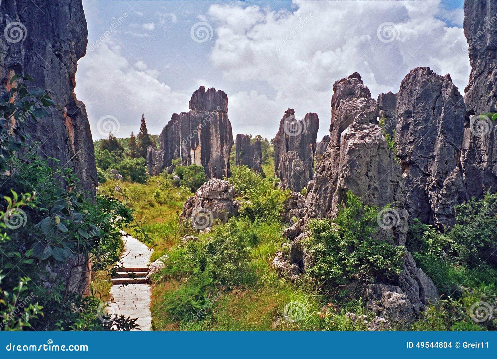 shilin -石森林的片段-在云南的昆明,瓷附近.图片