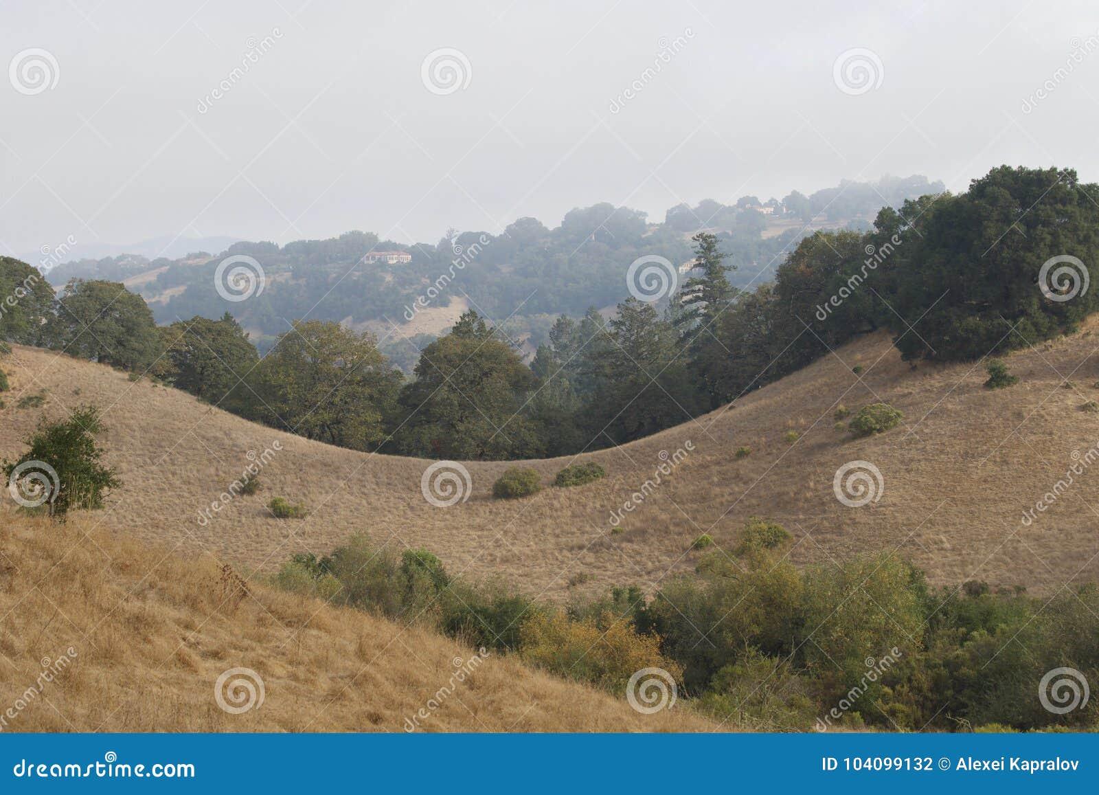 Shiloh Ranch Regional The parkerar inkluderar ekskogsmarker, skogar av blandade evergreen, kanter med att sopa sikter av Santa Ro