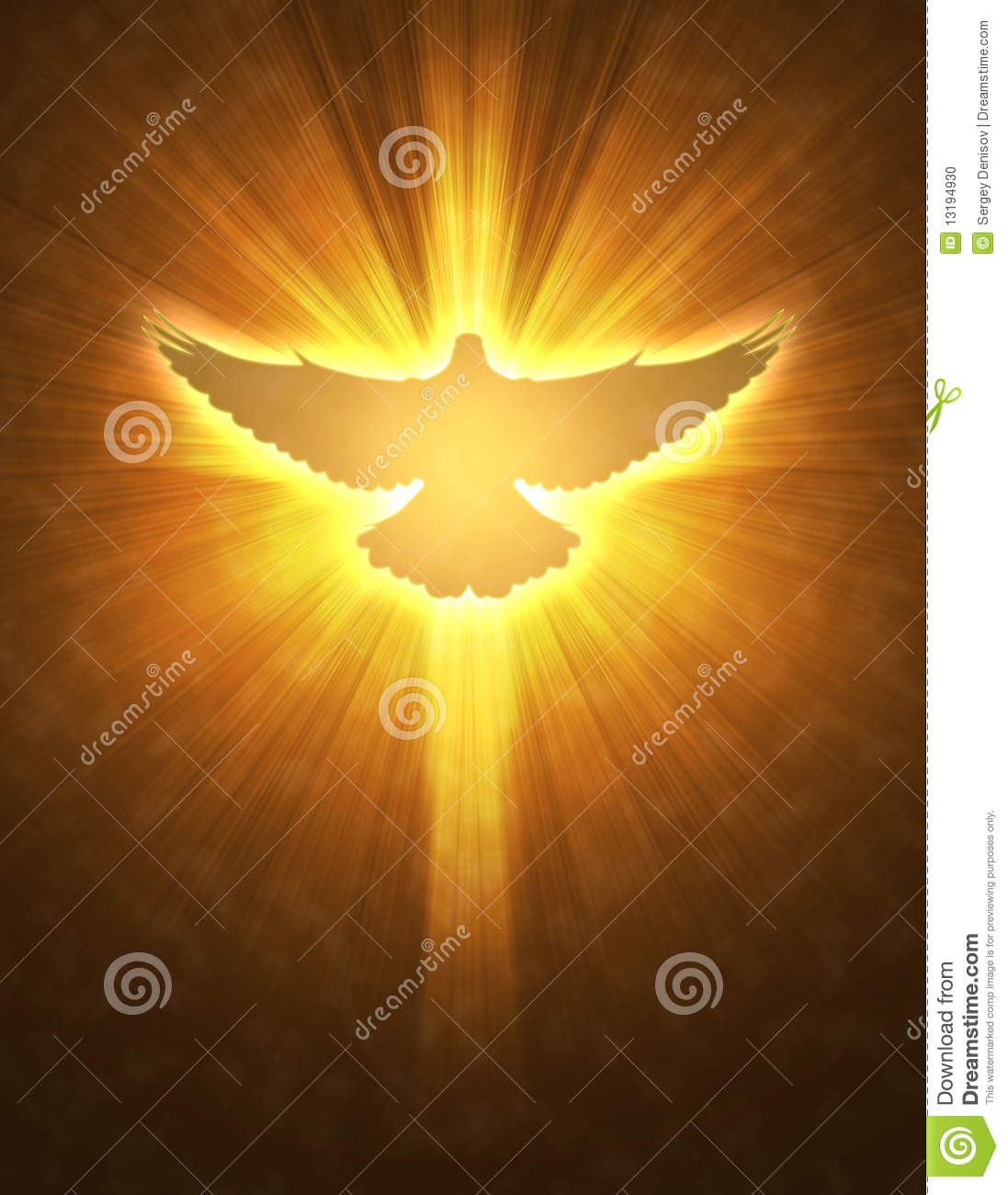 shining dove with rays on a dark stock illustration