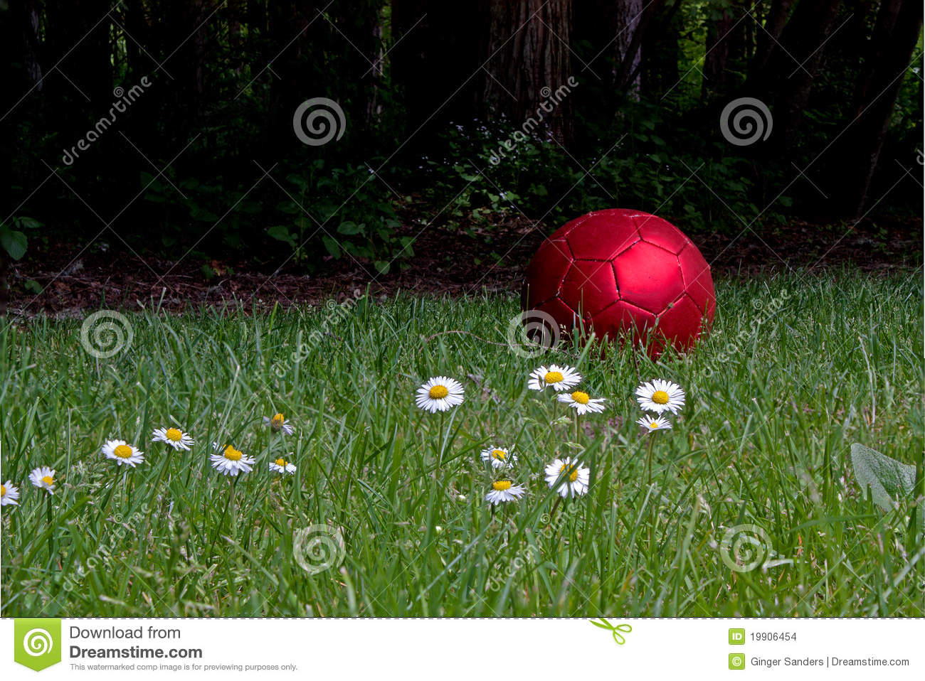 Shiny Red Soccer Ball With Daisies