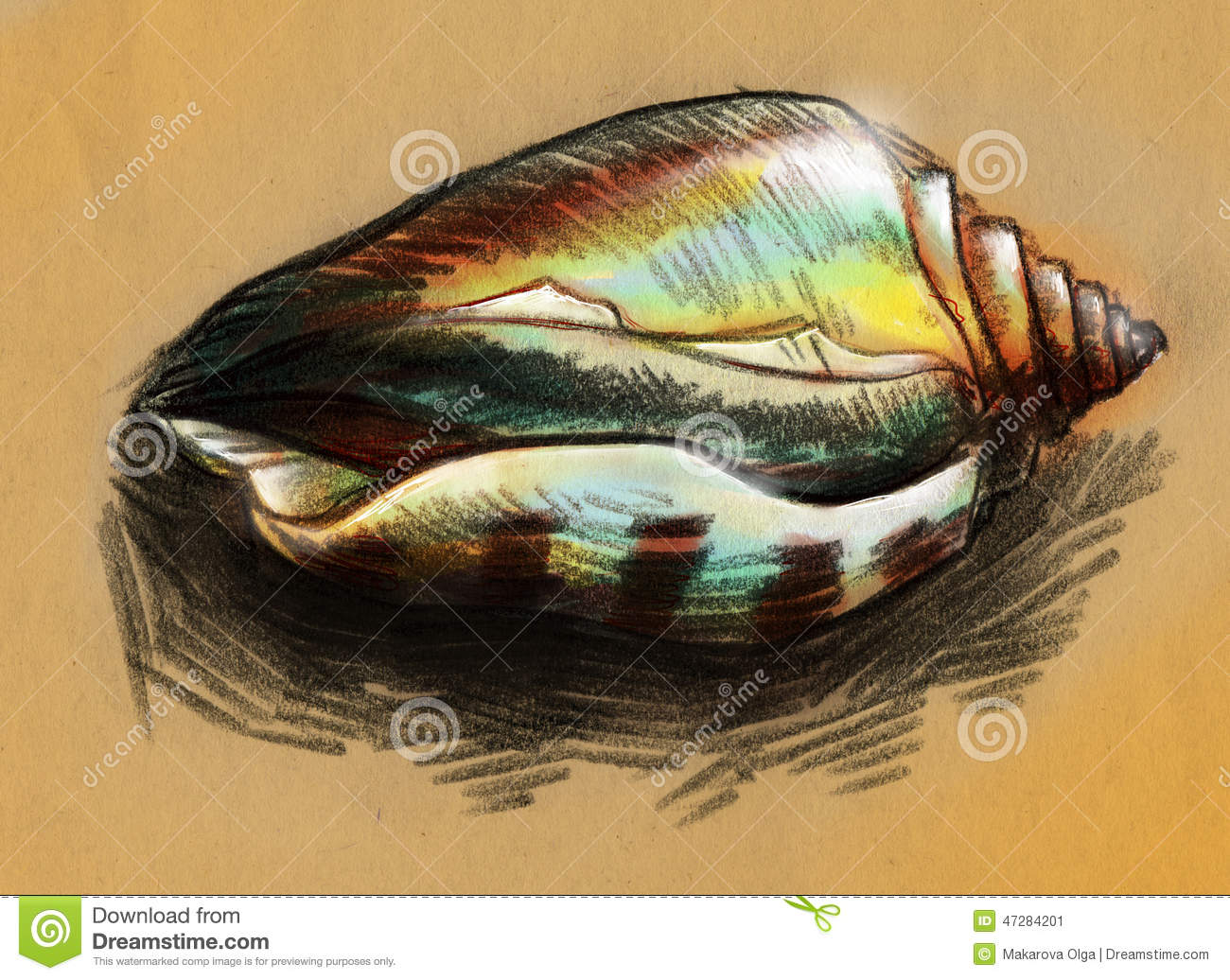Hand Drawn Pencil Sketch Of A Shiny Green And Yellow Sea Shell With