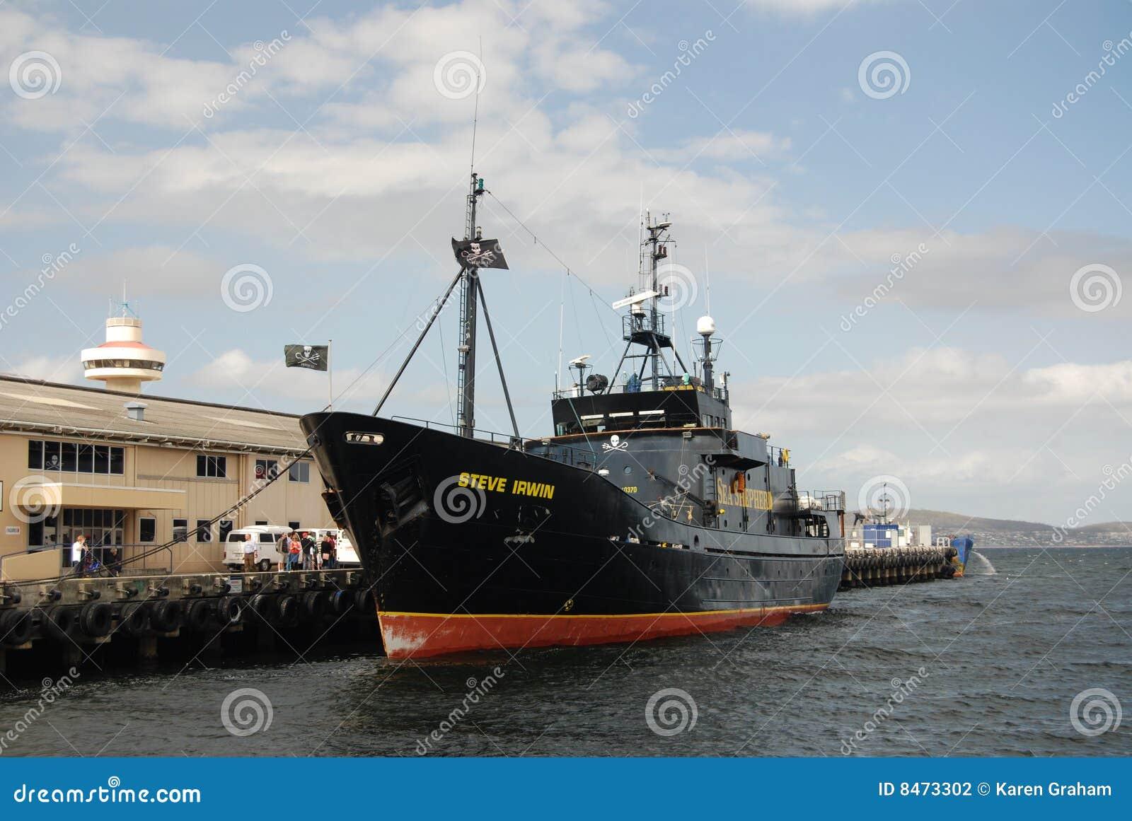 Ship steve för irwinhavsherde