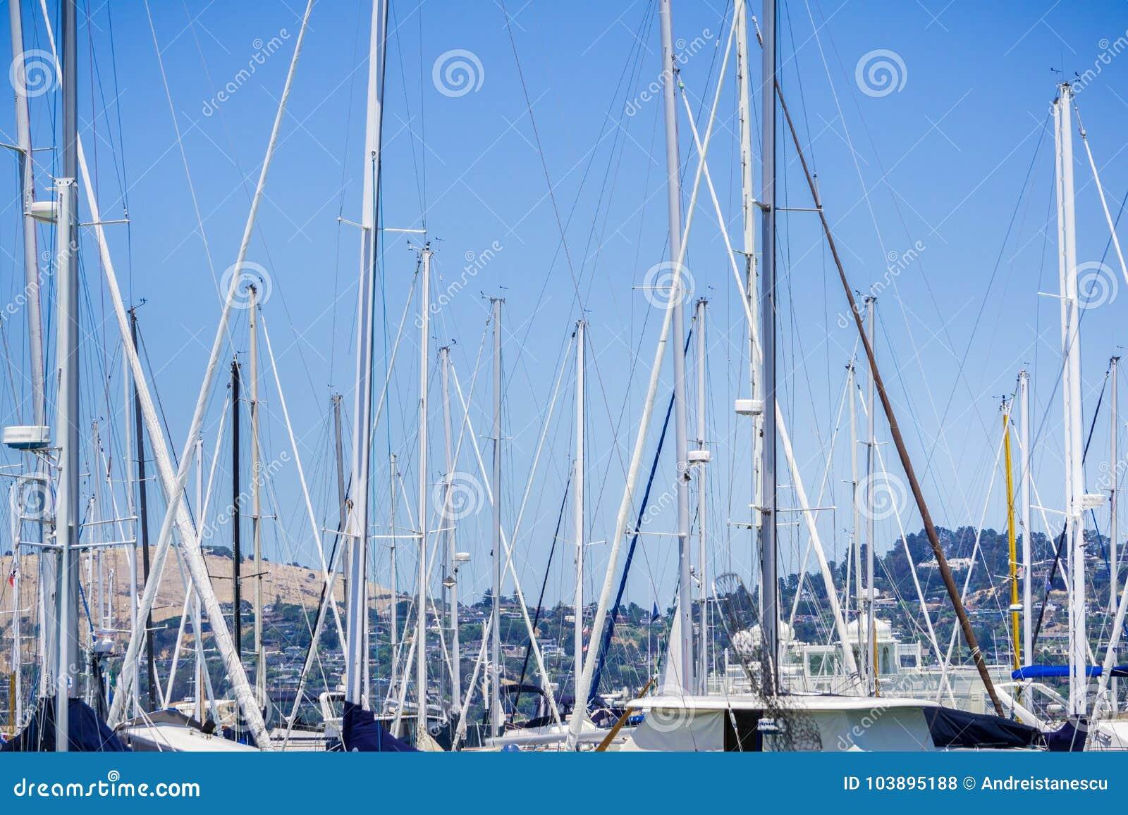 Ships moored in a marina, Sausalito, California