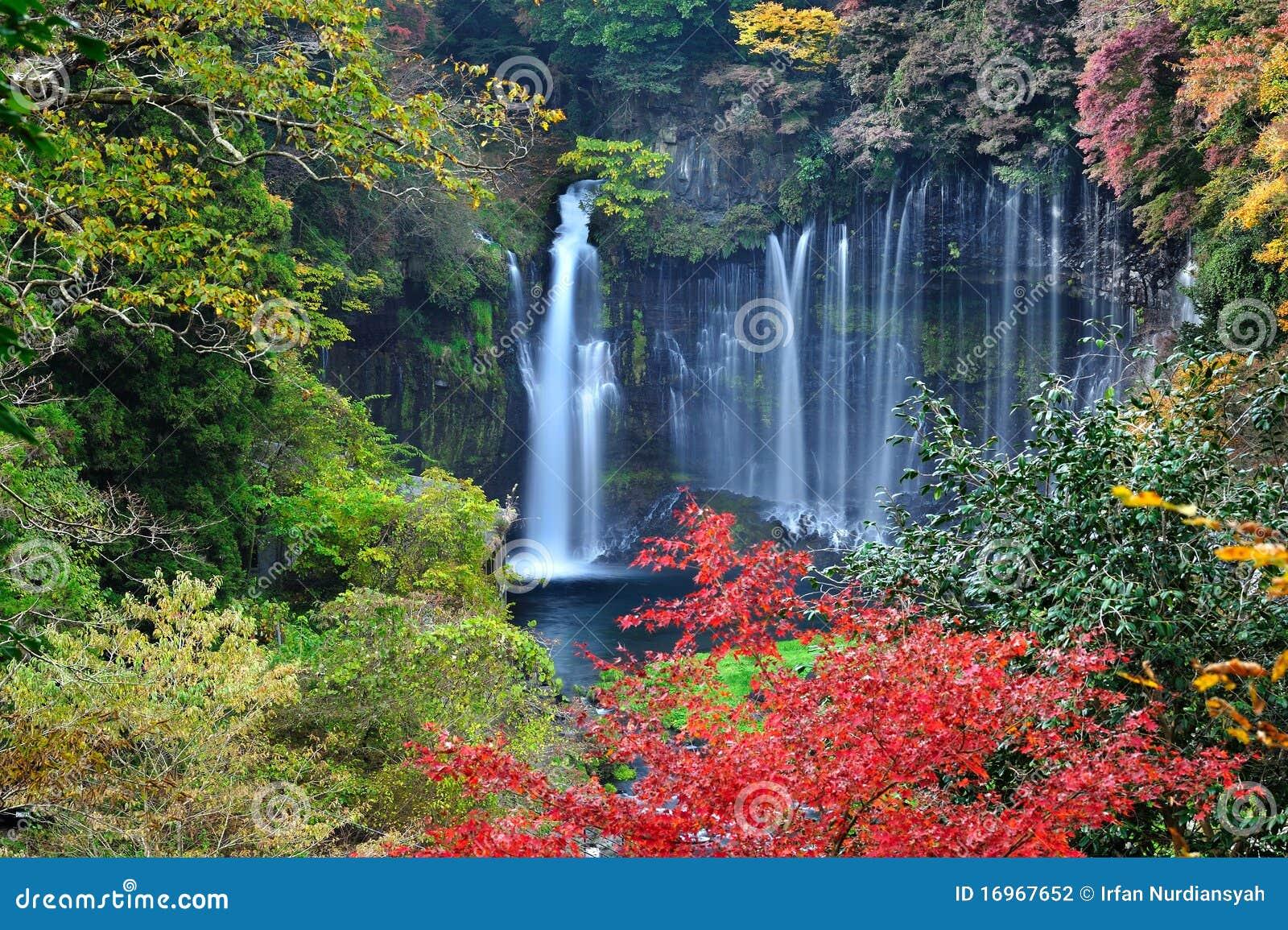 Wallpaper Shiraito Falls Waterfall
