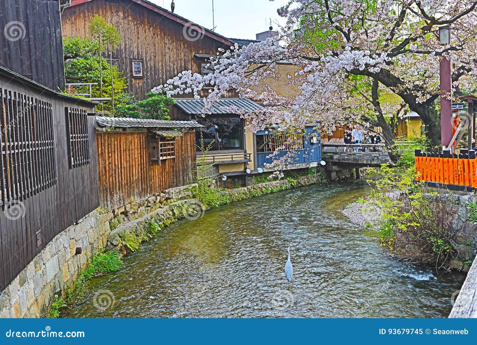 Shirakawa-Minami Dori in Kyoto, Japan