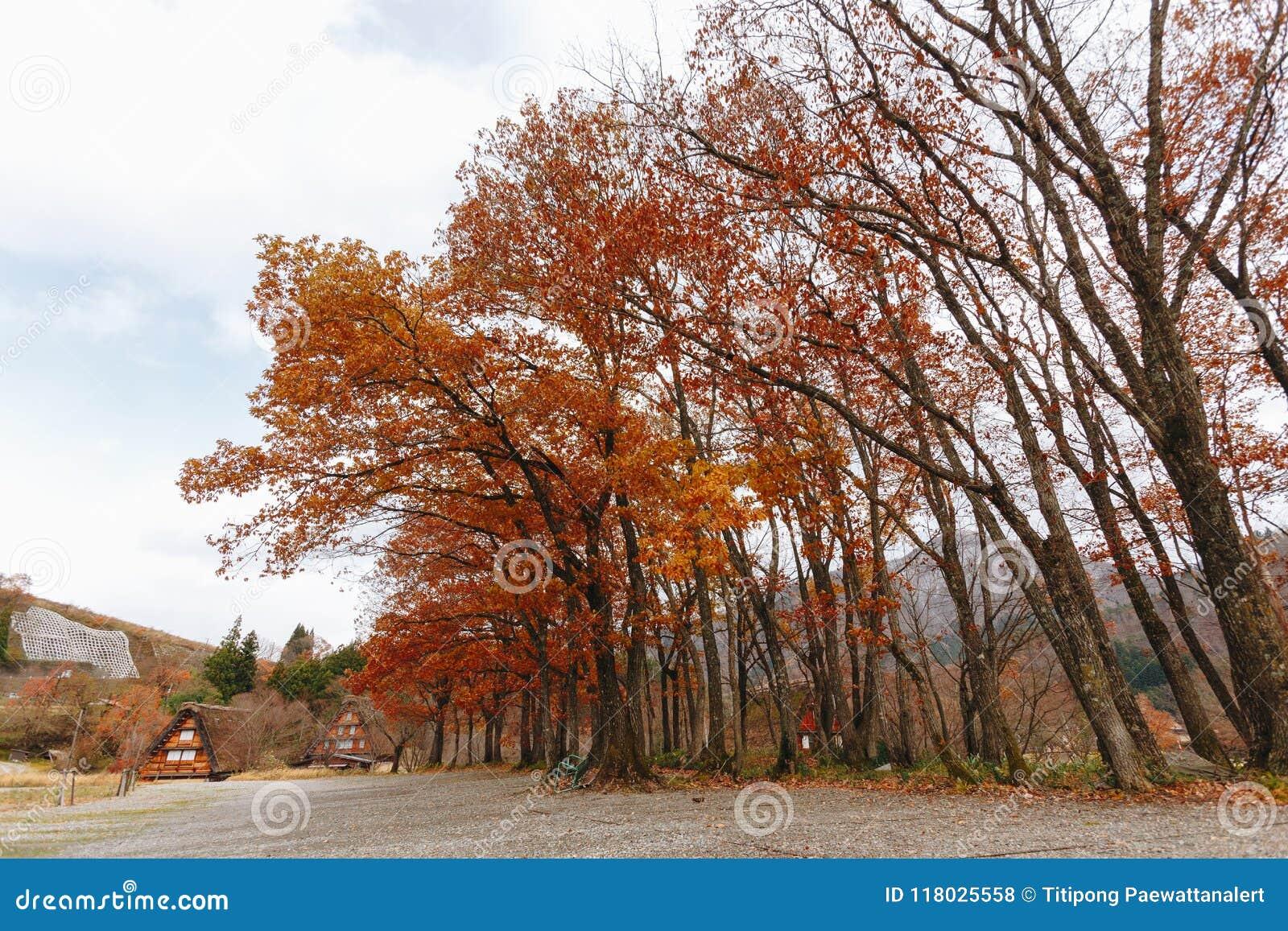 Shirakawa wioska w późny listopad jesieni zima sezon