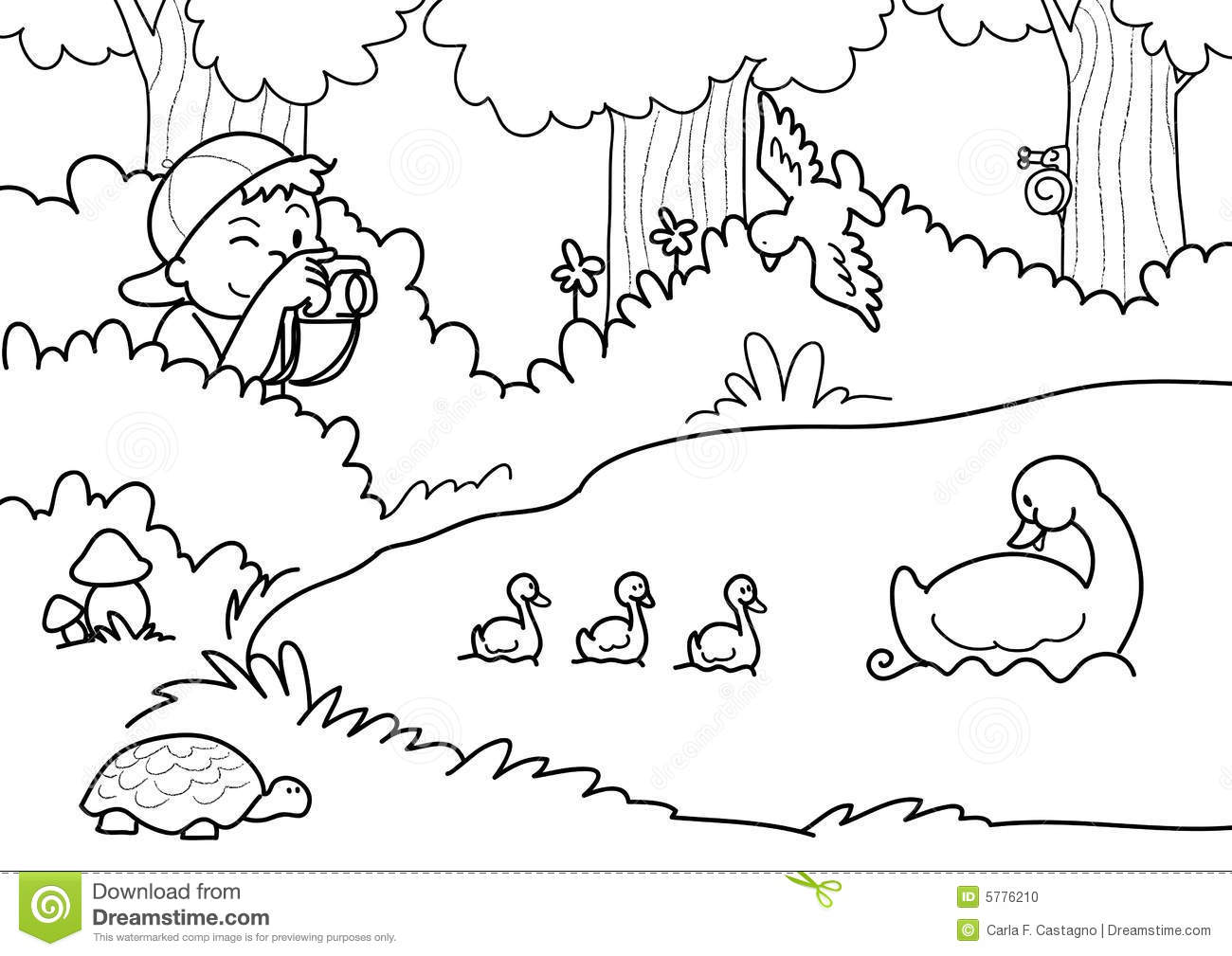 Coloring pictures of nature - Royalty Free Stock Photo Download Shooting Nature Coloring