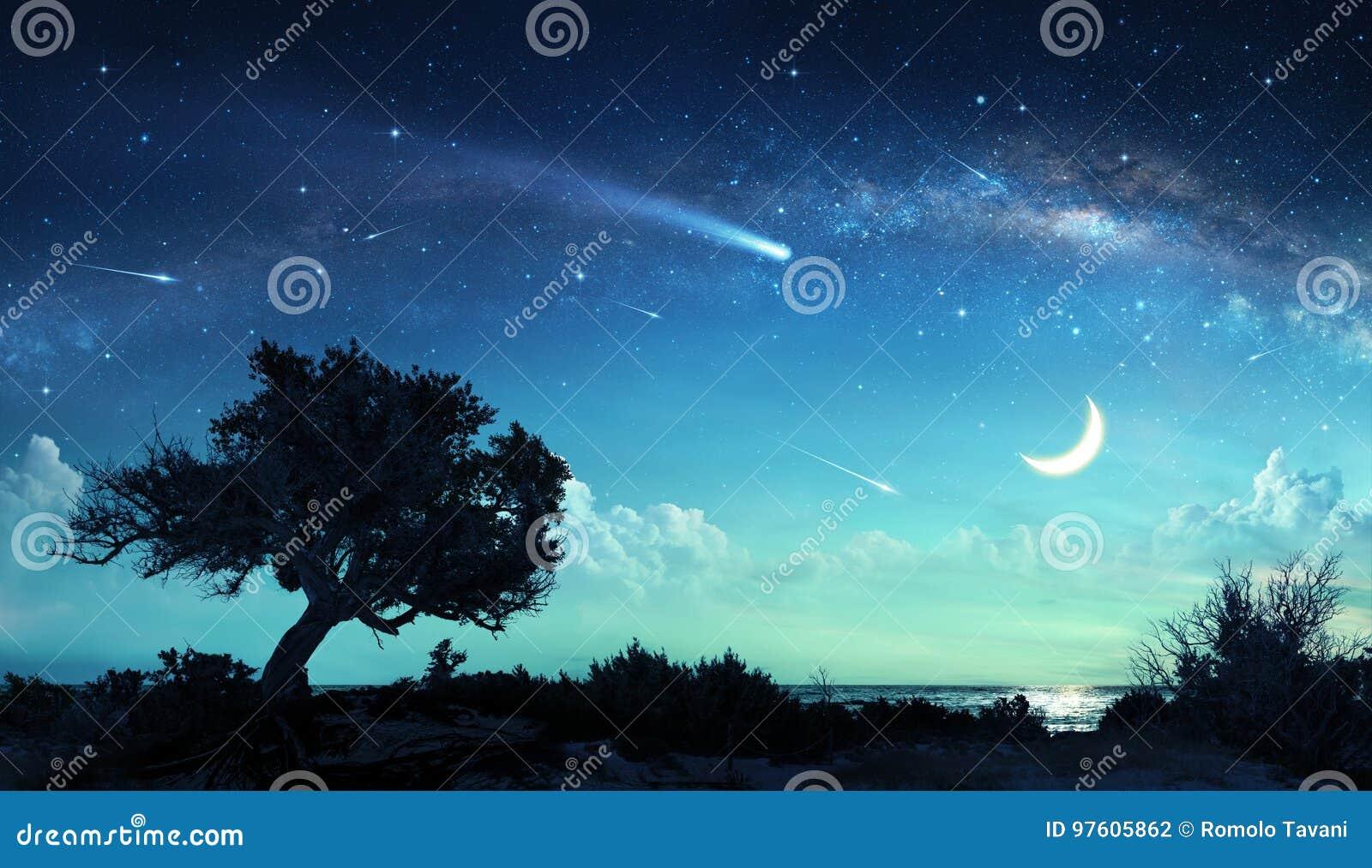 Shooting Stars In Fantasy Landscape