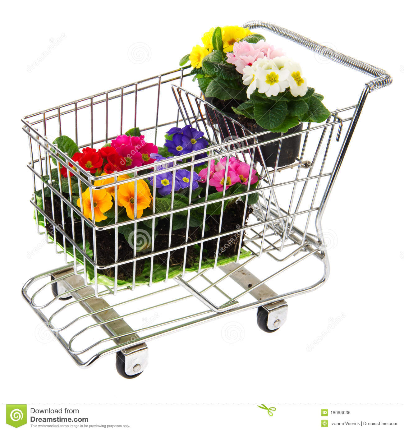Shopping Cart With Flowers Royalty Free Stock Image ...