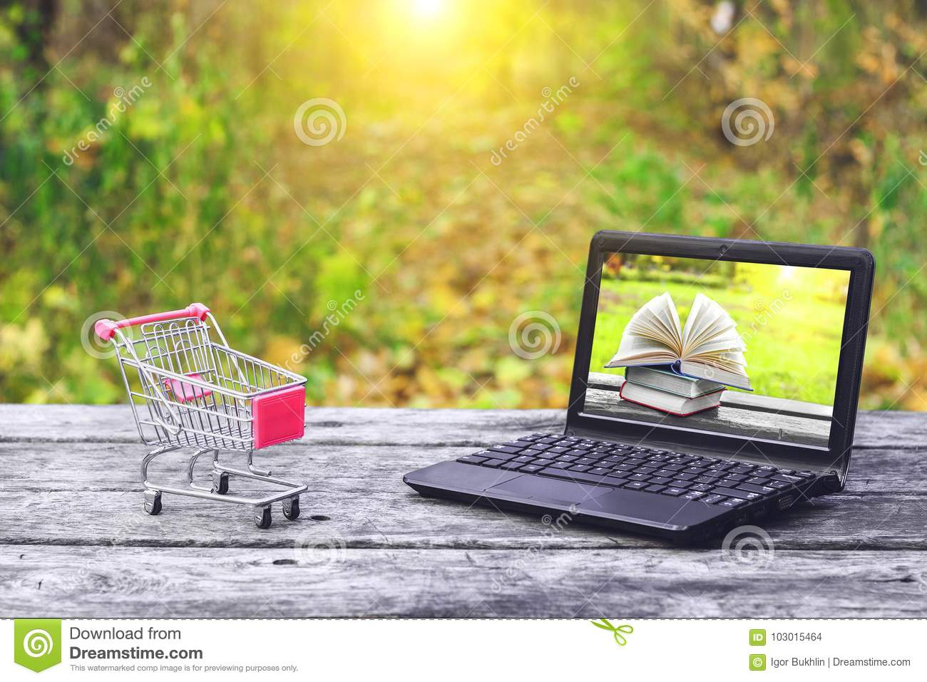 Shopping cart and laptop with books on the screen on the old wooden table at the nature background. Back to school, education.