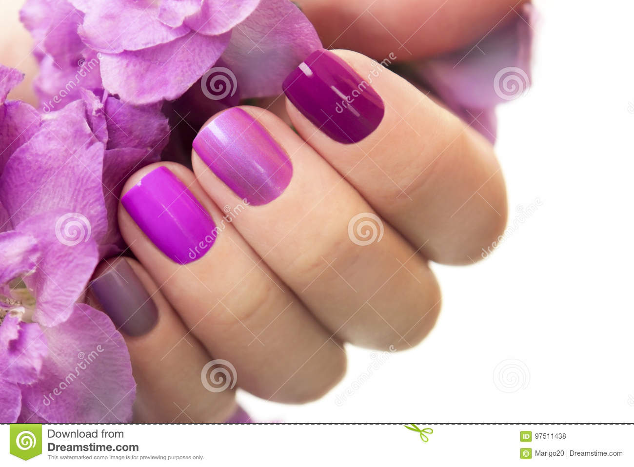 Short purple maroon manicure .
