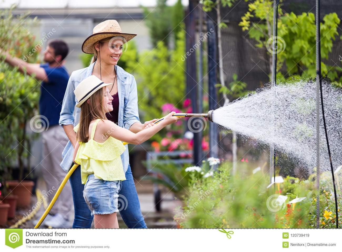 Beautiful young woman with her daughter watering the plants with a hose in the greenhouse.