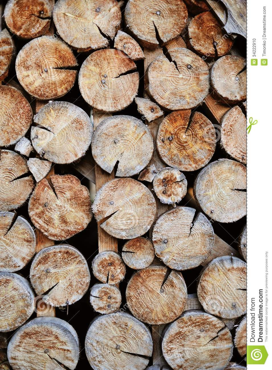 Shot Of A Pile Of Cut Tree Stock Photo Image 34222910