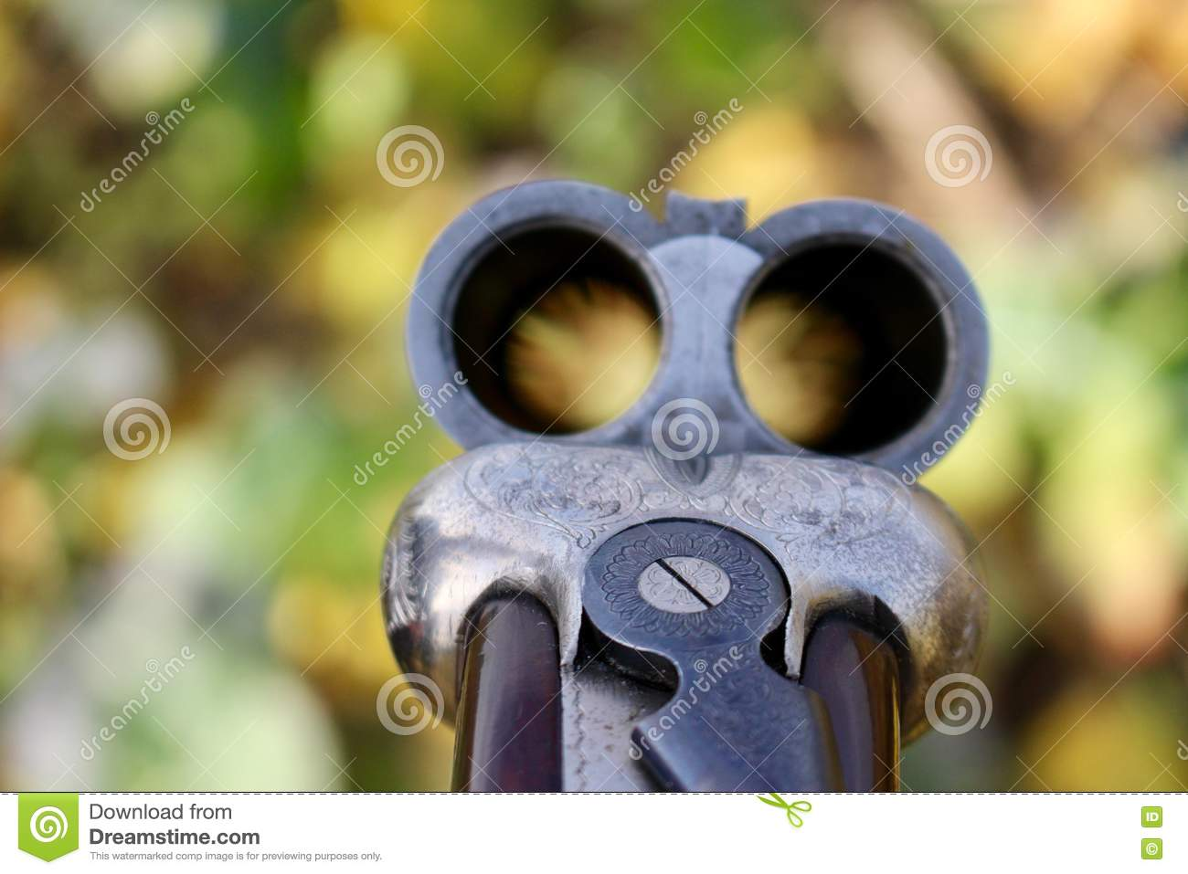 Shotgun barrel stock photo  Image of farm, looking, shoot