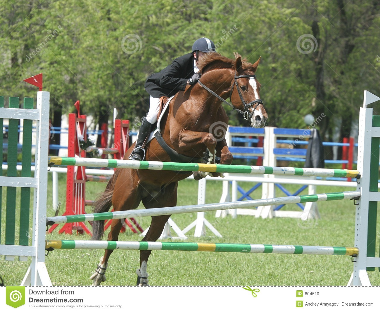 Show Jumping Course Design 2017 2018 Best Cars Reviews