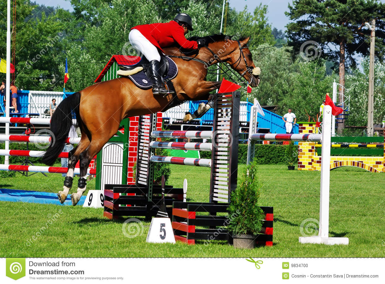 Show-Jumping Dreams #4 (Magic Ponies) by Sue Bentley