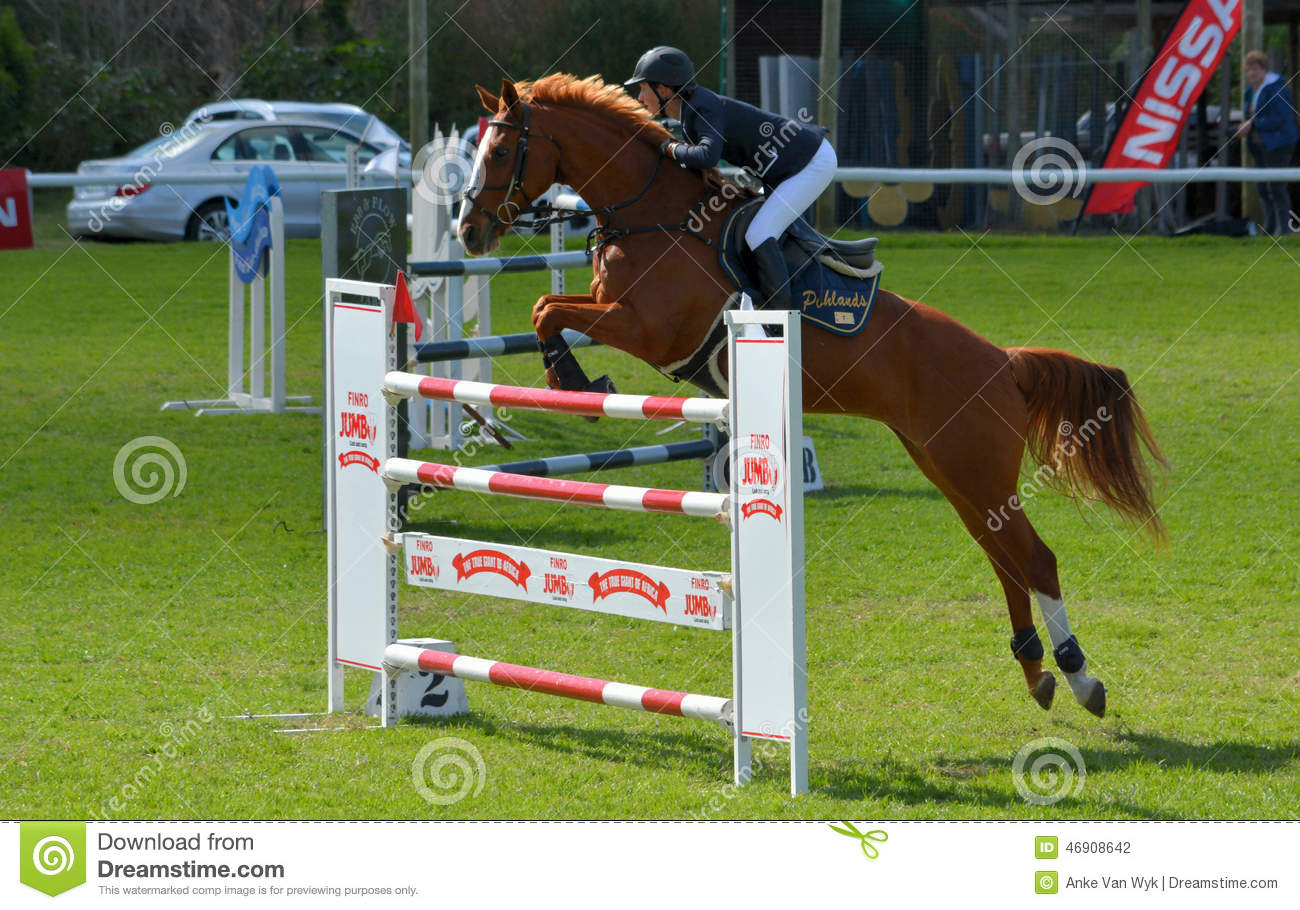 Show Jumping Horse And Rider Editorial Photography Image Of Jumping Equestrian 46908642