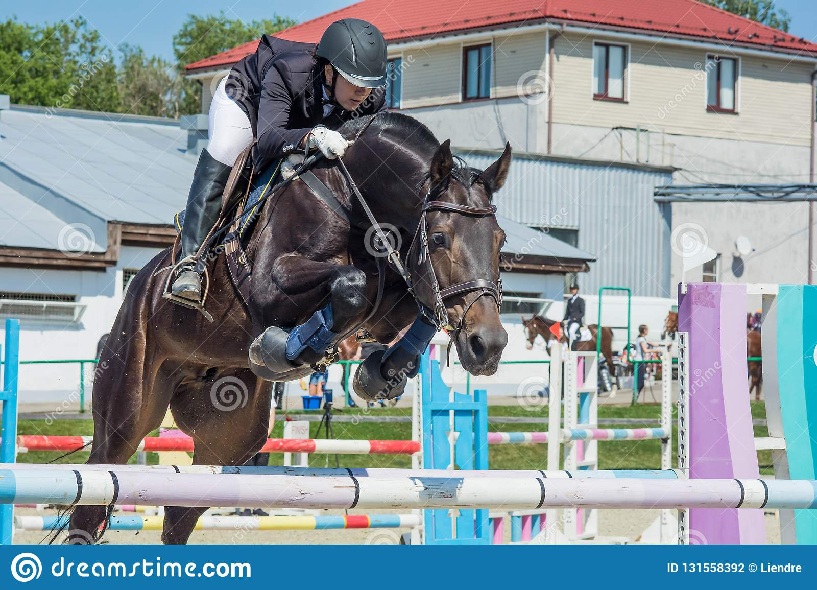 Show Jumping Summer Cup Competition 2018 Stock Photo Image Of Horses Black 131558392
