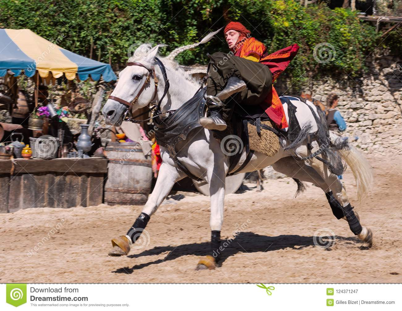 The Show : The Legend of Knights in Provins, France