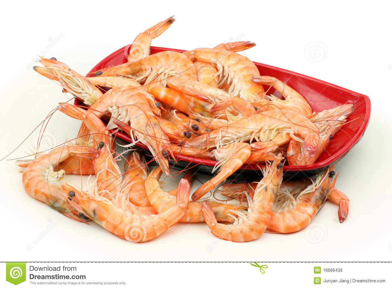 Shrimp Royalty Free Stock Photos - Image: 16666438
