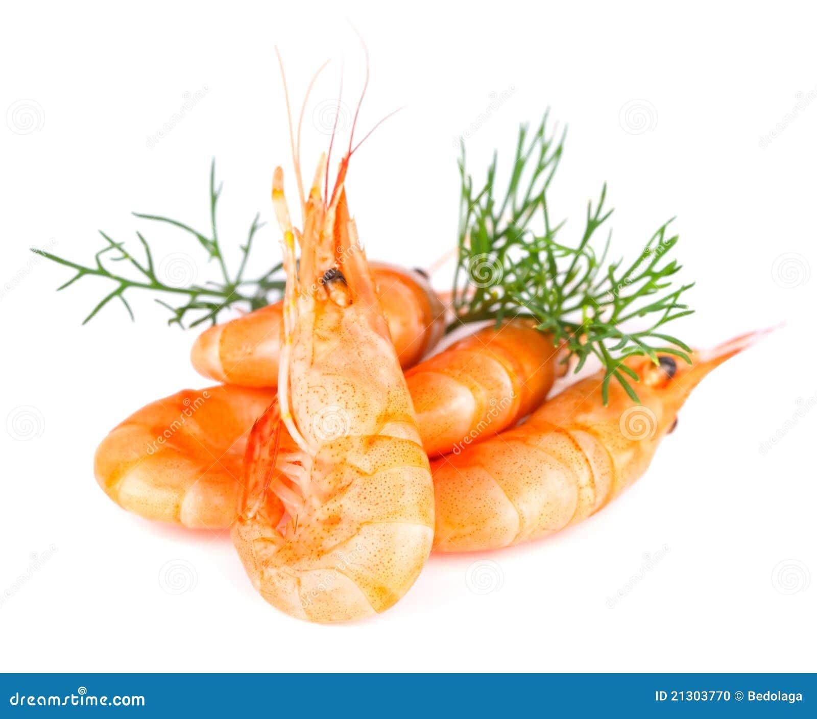 Shrimp Stock Photo - Image: 21303770
